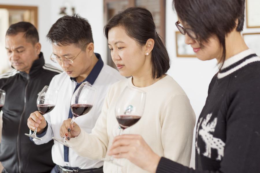 Los paisajes del Vino