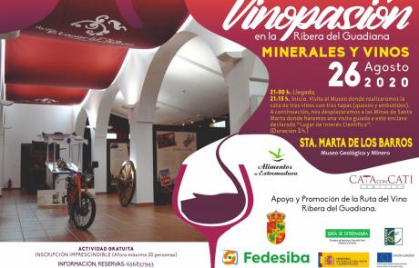 Vinopasión - Minerales y Vinos